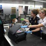 UK customs