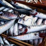 UK fish market